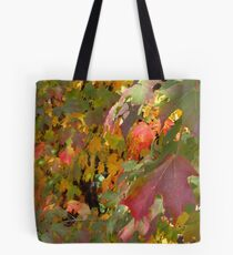 Trees Along The Trail 4137 Tote Bag