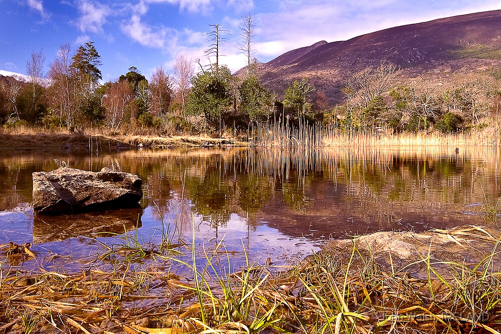 Winter Lake by John Walsh, IRELAND