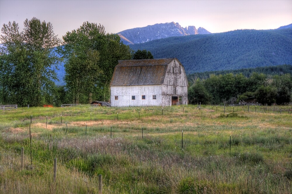 Whitewashed Barn at Dusk by Terence Russell