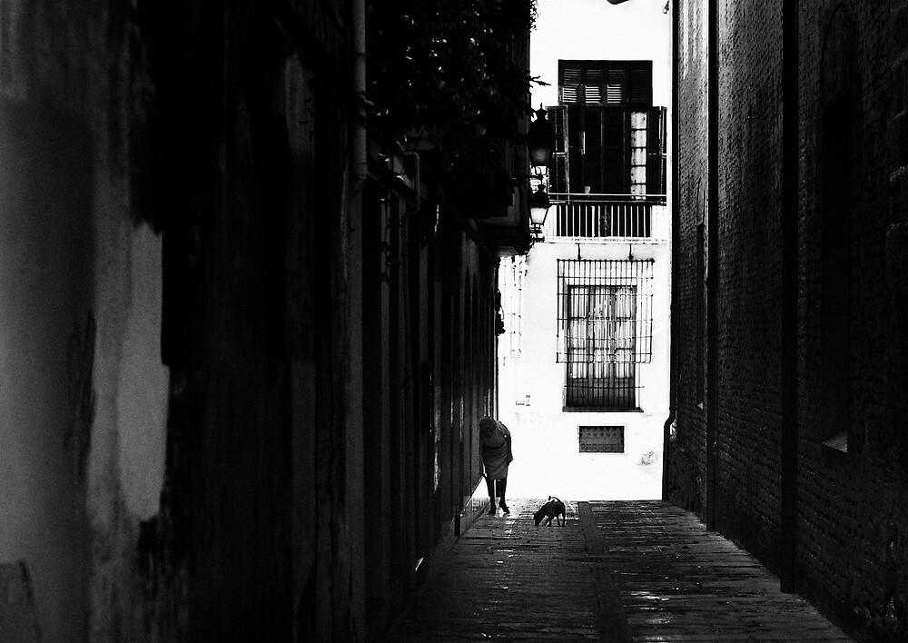 la vecchia donna by Rivaldo1979