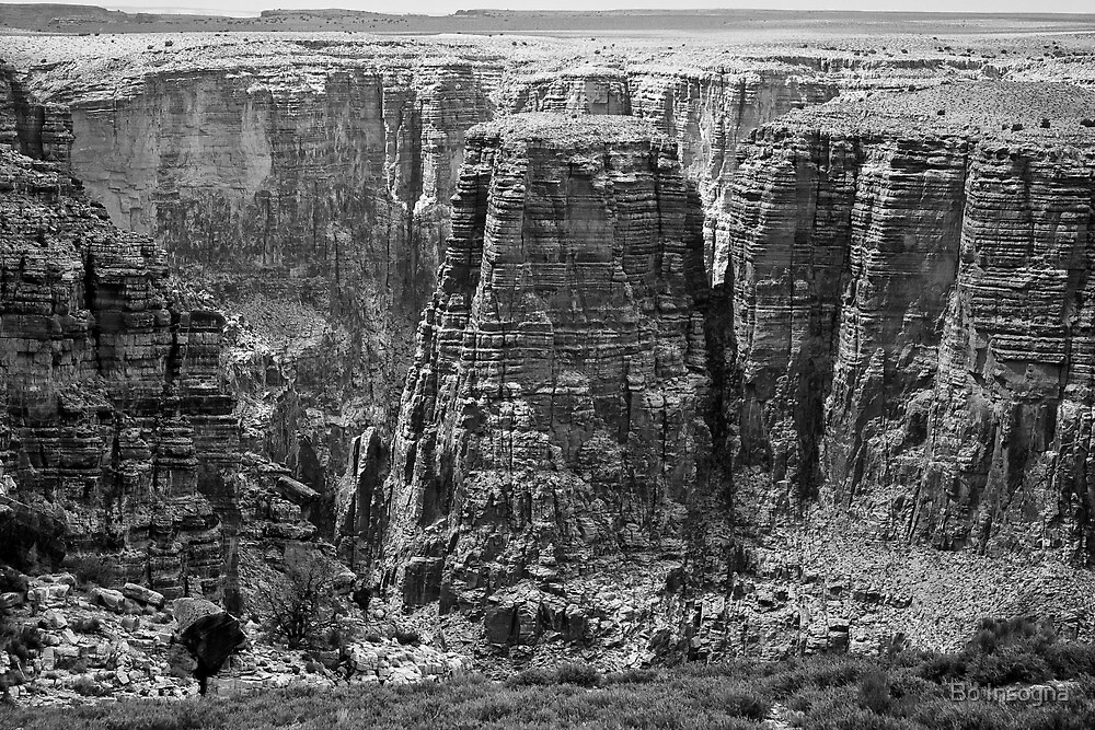 Black and White Canyon by Bo Insogna