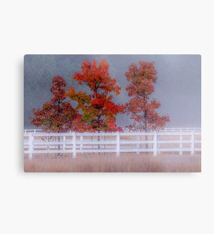 Autumn at the ranch Metal Print