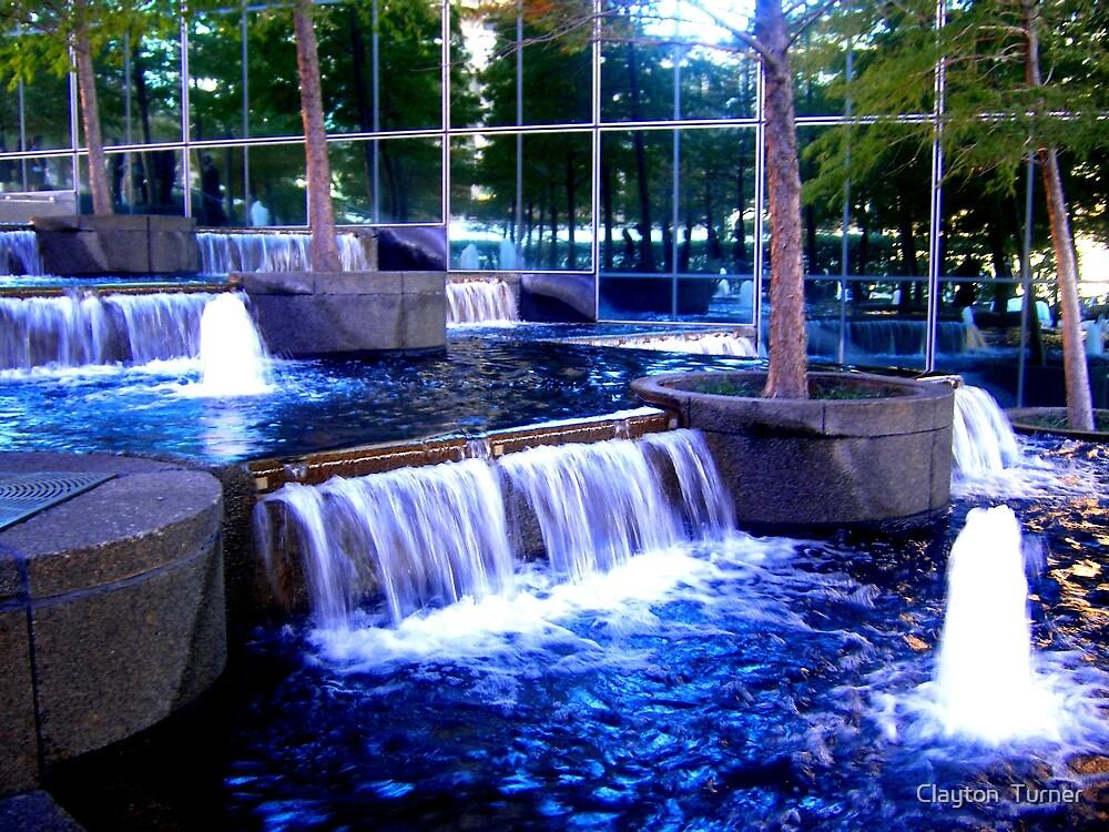 Reflecting Pool by Clayton  Turner