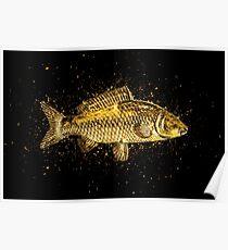 Animal carp golden Gold Poster