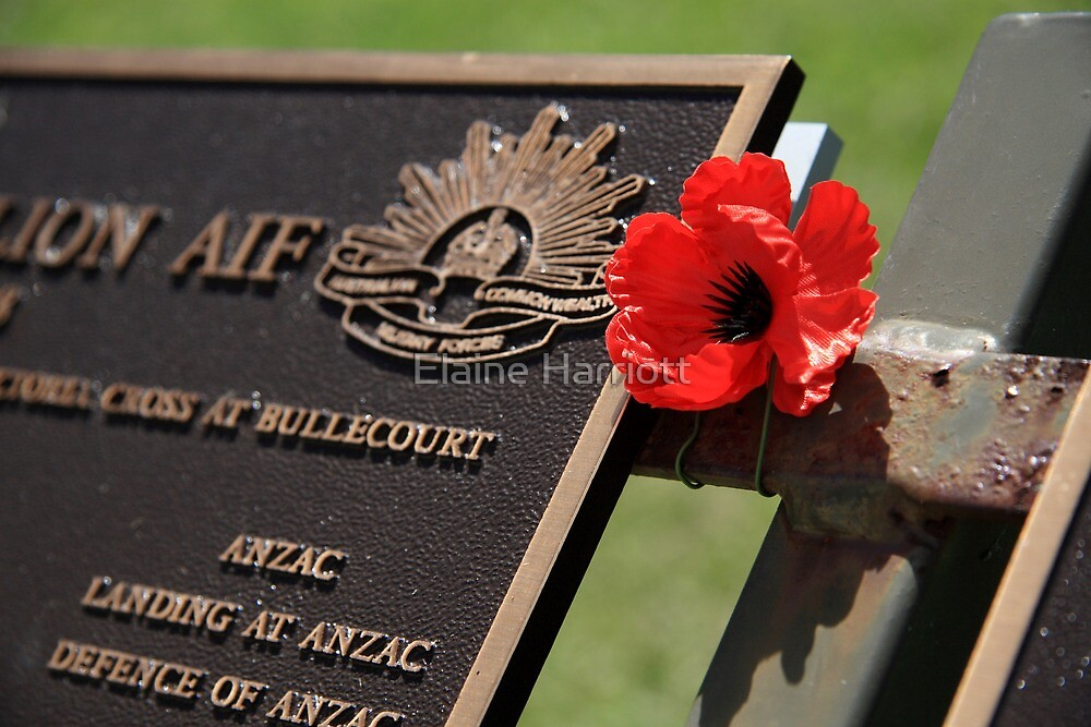 Lest We Forget by Elaine Harriott