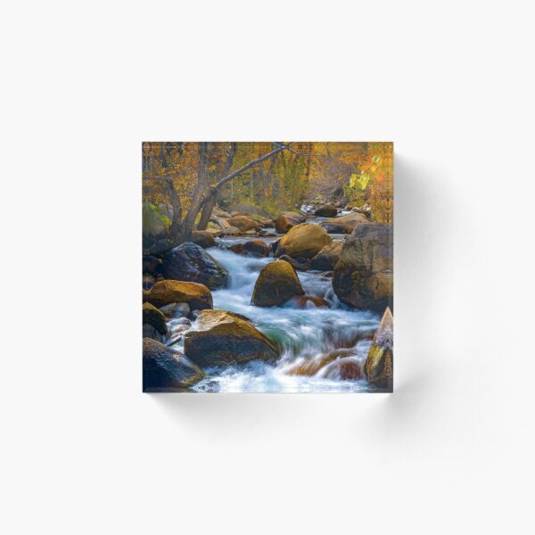 Bishop Creek Fall Colors South Fork Acrylic Block