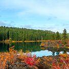 Clear lake, Oregon, USA by mistyrose