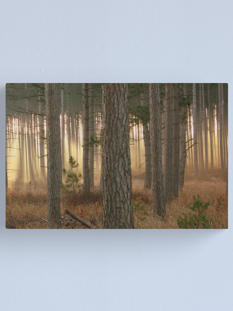 Alternate view of God's Angels~Totogatic Park Wisconsin Canvas Print