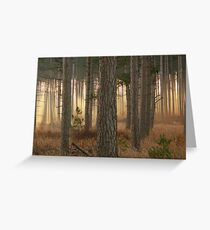 God's Angels~Totogatic Park Wisconsin Greeting Card