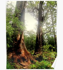 Tingle Tree Poster
