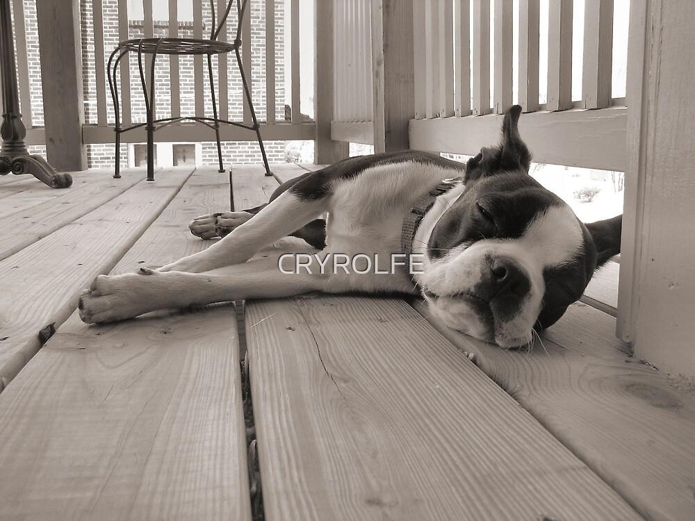 DOG TIRED by CRYROLFE