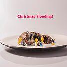 Christmas Flooding by Alan Organ LRPS