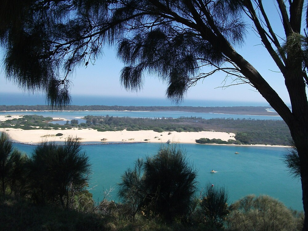 sea beyond the branches-lakes entrance, east gippsland, Victoria, Australia by spiritofthebush