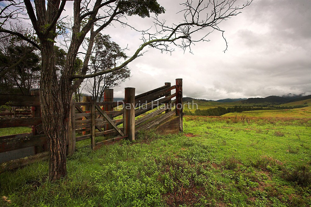 The Cattle Chute by David Haworth