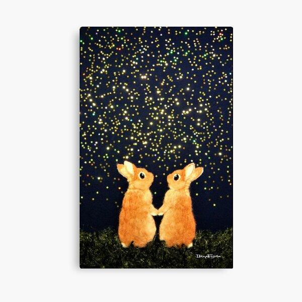 looking for shooting stars (2008) Rabbit / Bunny Art Canvas Print