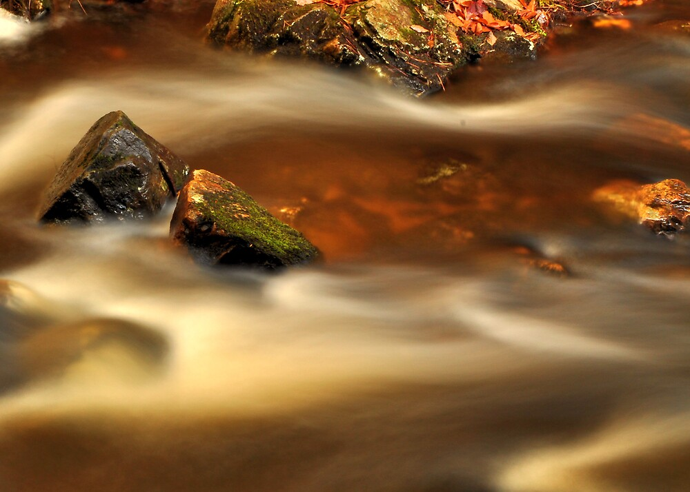 Brook Mist by JRCollection