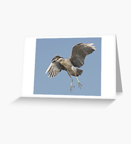 Clear The Landing Strip ! Greeting Card