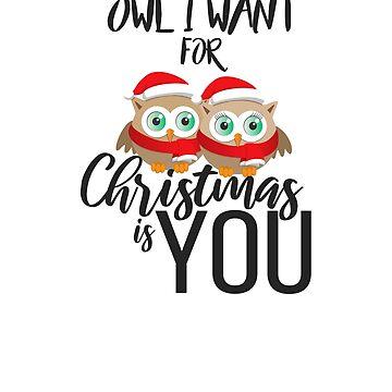 Cute Owl Christmas T-Shirt Christmas Birthday Gift Tee by jacko89