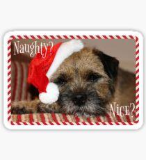 Border Terrier Christmas Card - Naughty? Nice? Sticker