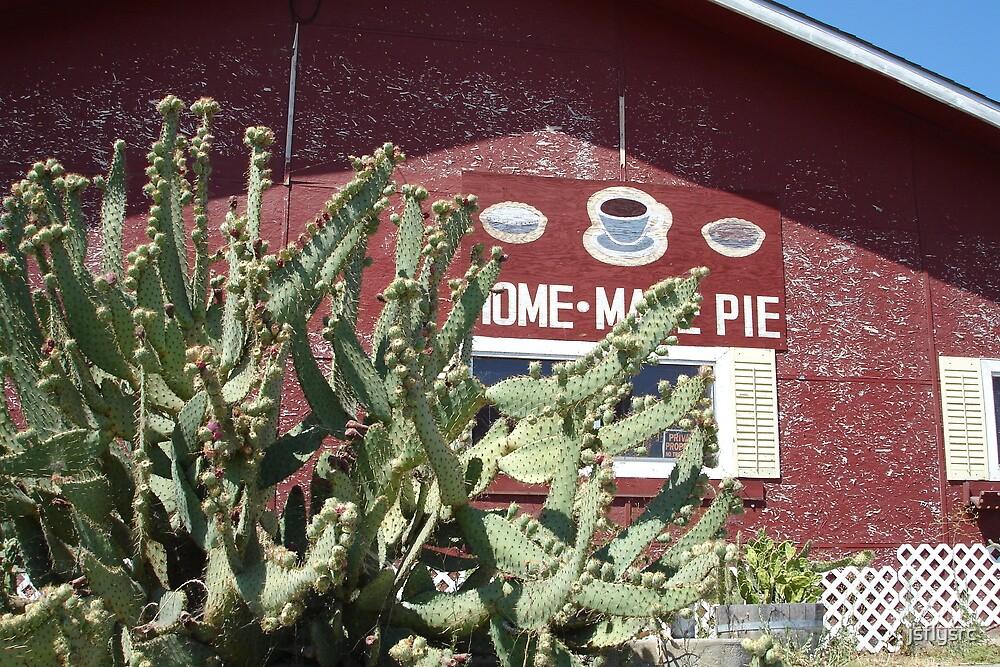 Home Made Pie by jsflysrc