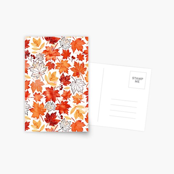 Autumn leaves and berries Postcard