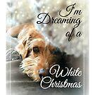 Dog Christmas Card ~ I'm Dreaming Of A White Christmas by ScruffyLT