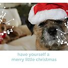 Border Terrier Christmas Card - Have Yourself A Merry Little Christmas by ScruffyLT