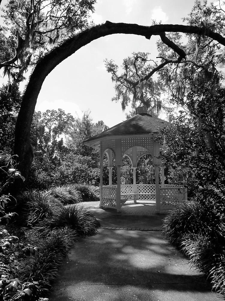 Leu Gardens Gazebo by Diana Forgione