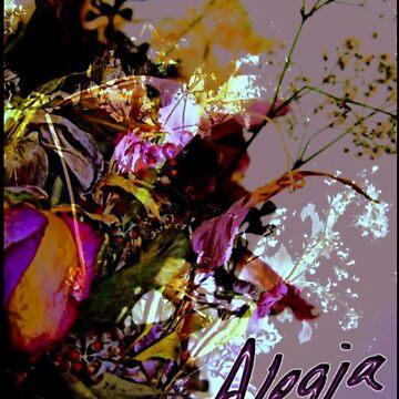Alegia by TheUnorthodox