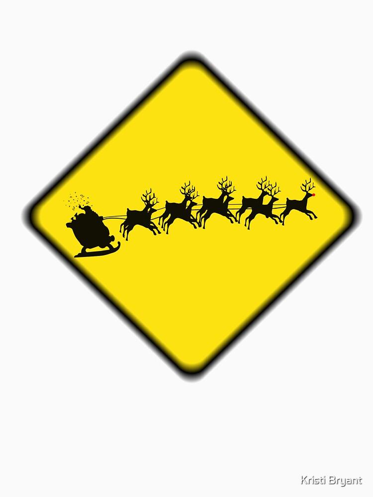 Caution- flying reindeer ahead by LongStories
