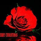 Red Rose christmas card by Dawn B Davies-McIninch