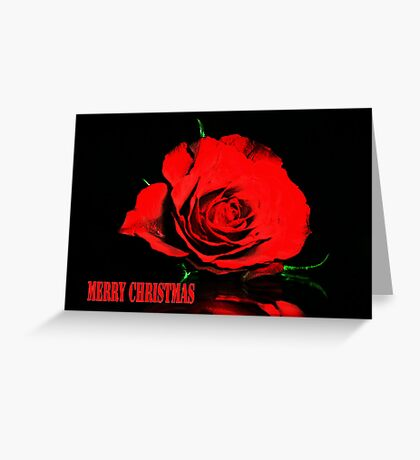 Red Rose christmas card Greeting Card