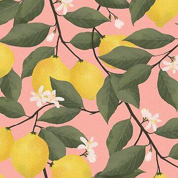 Zitronenbaum von lauragraves