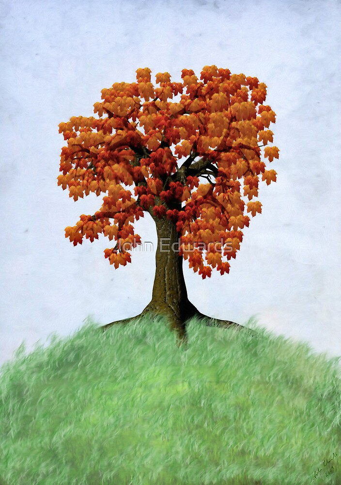The tree on the hill by John Edwards