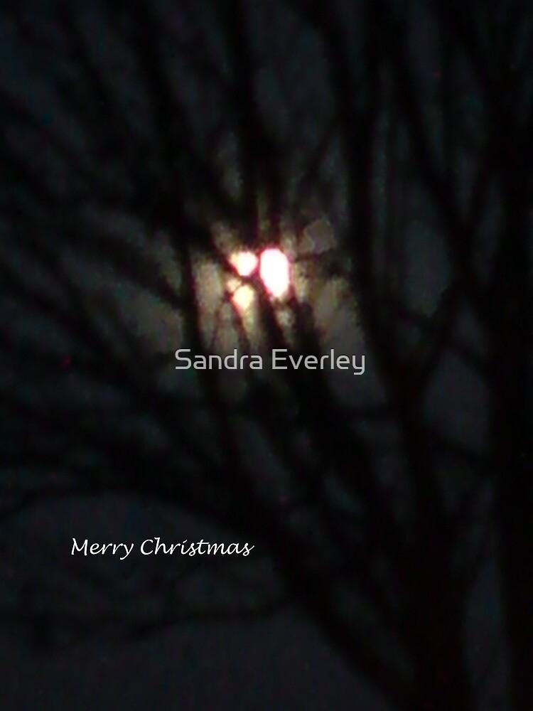 Christmas Moon by Sandra Everley