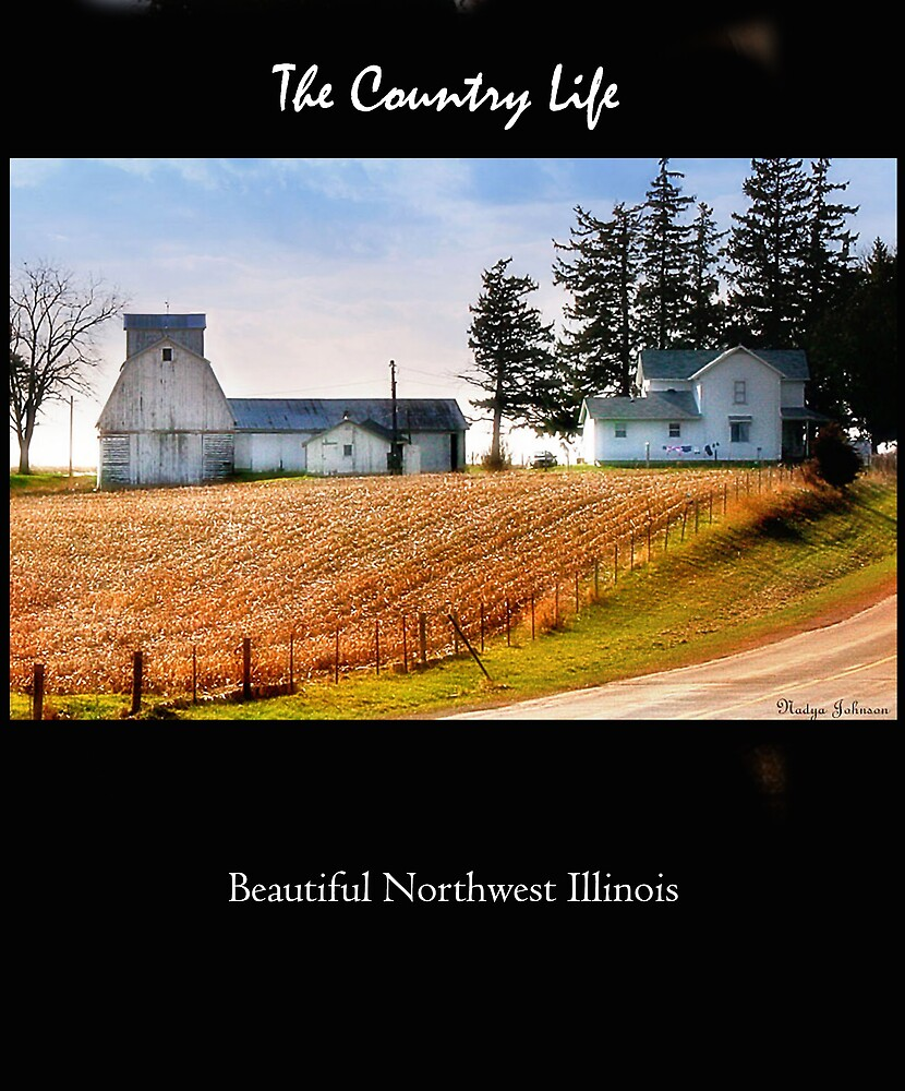 Country Life in black by Nadya Johnson