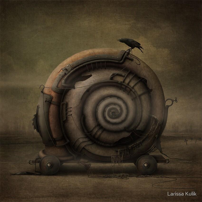 Snail by Larissa Kulik