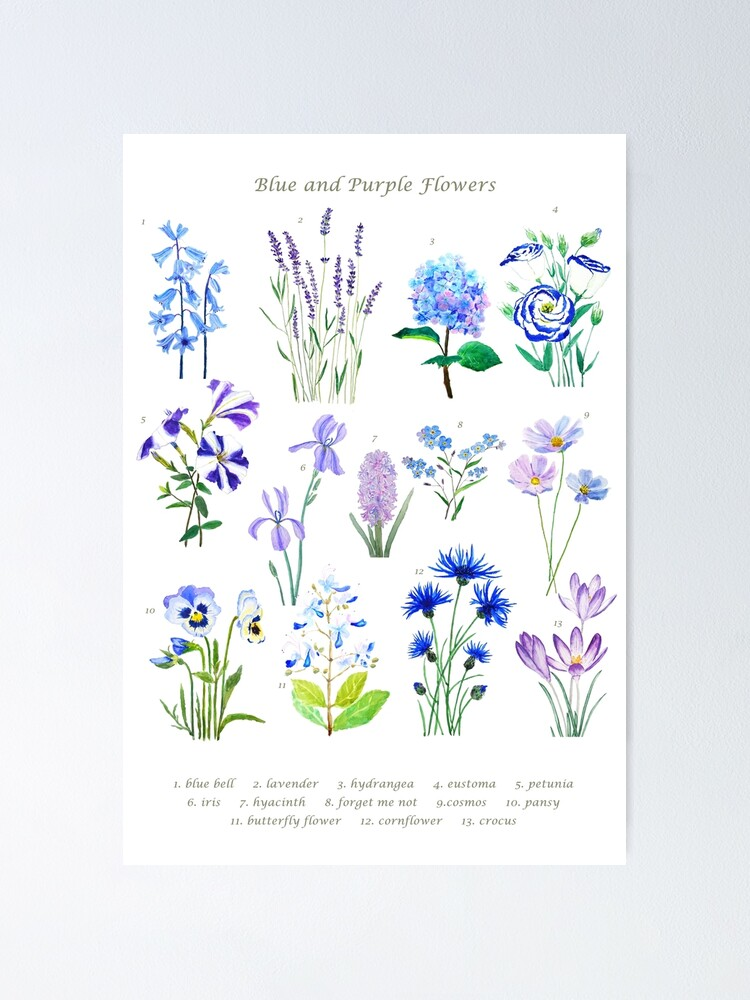 Alternate view of blue and purple  flower collection watercolor  Poster