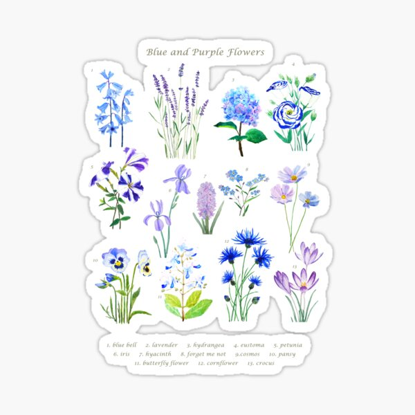 blue and purple  flower collection watercolor  Sticker