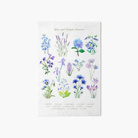 blue and purple  flower collection watercolor  Art Board Print