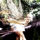 Prima Fairy II by David Knight