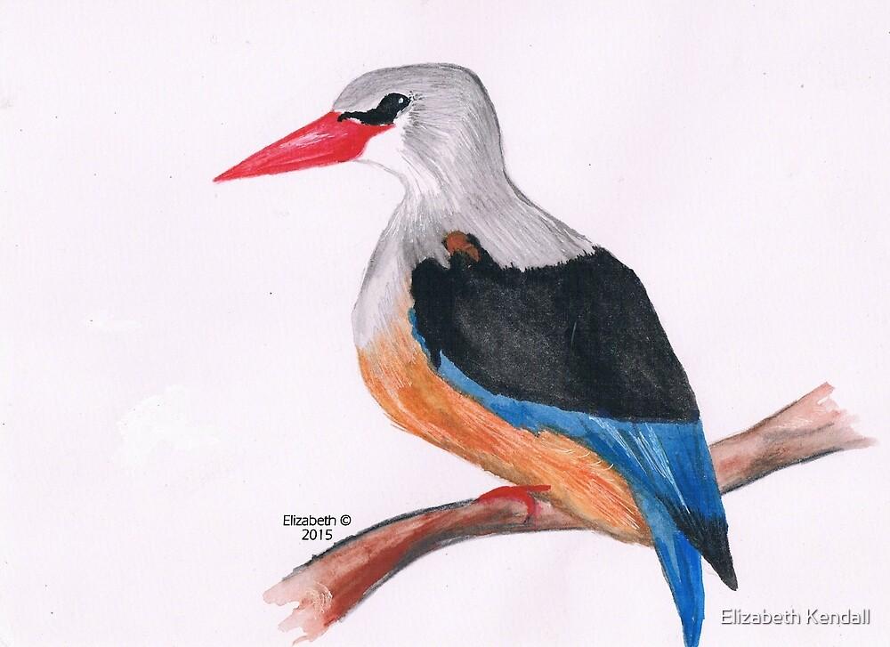 Greyhooded Kingfisher by Elizabeth Kendall