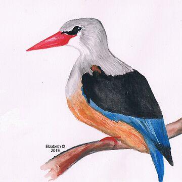 Greyhooded Kingfisher by Happyart
