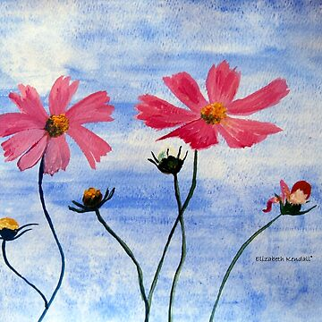 Cosmos flowers in my country by Happyart
