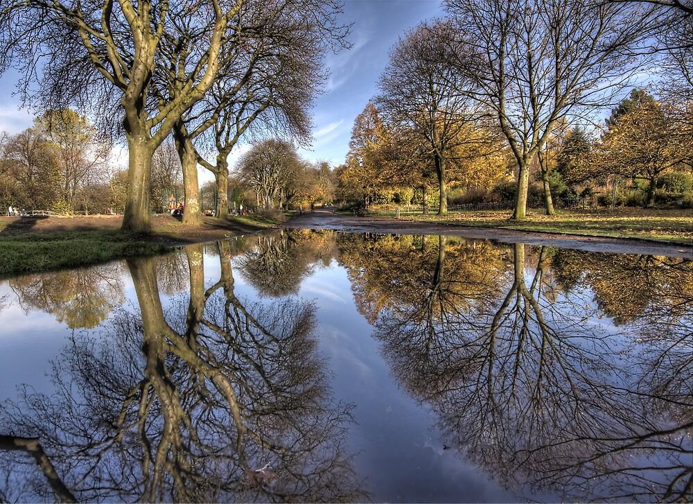 Kelvingrove Reflections by Daniel Davison