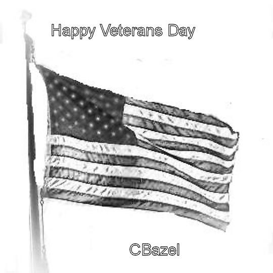 Happy veterans day by cece7894