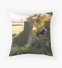 Caved View Throw Pillow