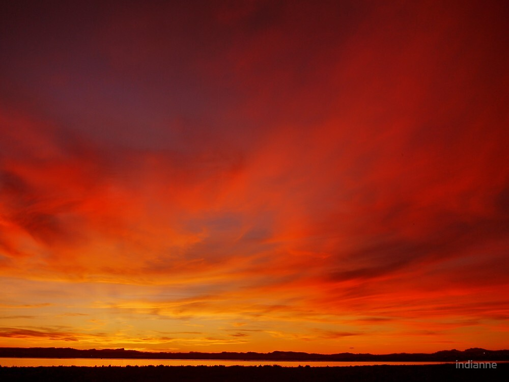 Orange Glow by indianne