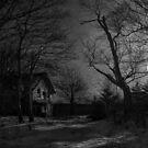 Moonrise by TheNatureOfThings