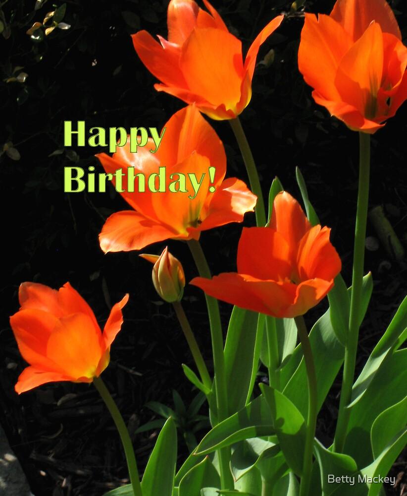 Fresh Birthday Tulips by Betty Mackey